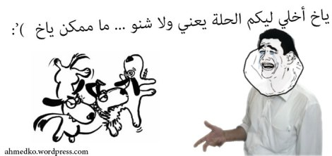 Ahmed and the bad dogs